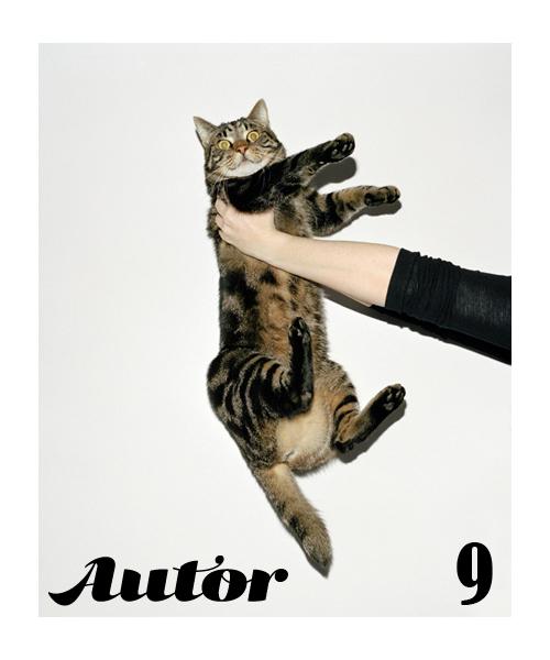 Aplica pentru AUTOR 9